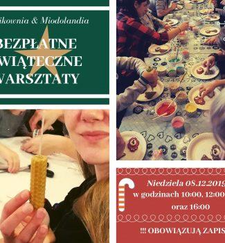 Bezpłatne, świąteczne warsztaty z Miodolandią i Trocikownią! 8.12.2019